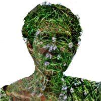 Fio Adamson - profile image