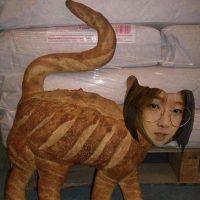 Qiyan Gao - profile image