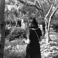 Jiayi Lu - profile image