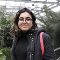 Amal Alhumaidan - profile image